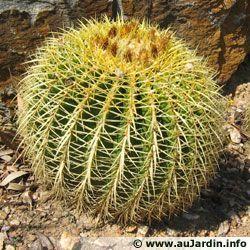 http://georgessylviemarie.g.e.pic.centerblog.net/g65w4c4k.jpg
